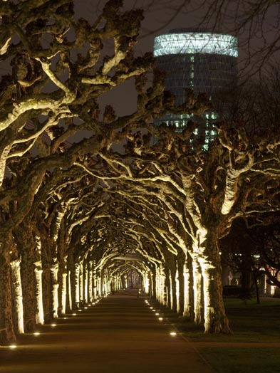 Nizza: underlit avenue lined with plane trees, © Stadtplanungsamt Stadt Frankfurt am Main